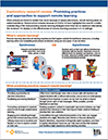 Infographic on the Promising Practices and Approaches to Support Remote Learning