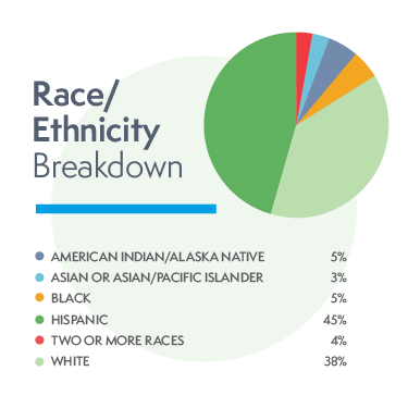 pie chart of Race/Ethnicity Breakdown