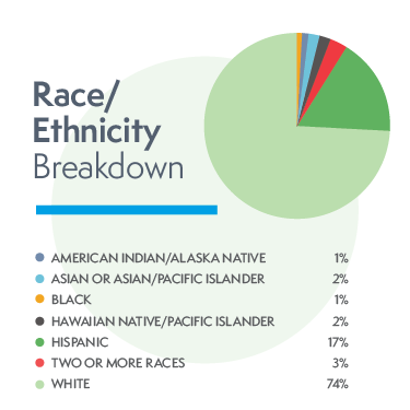 pie chart of Race or Ethnicity Breakdown