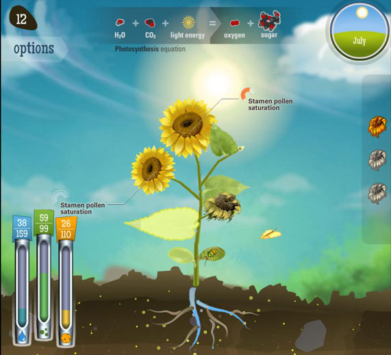 Screen shot of In Reach for the Sun students 'do' photosynthesis.